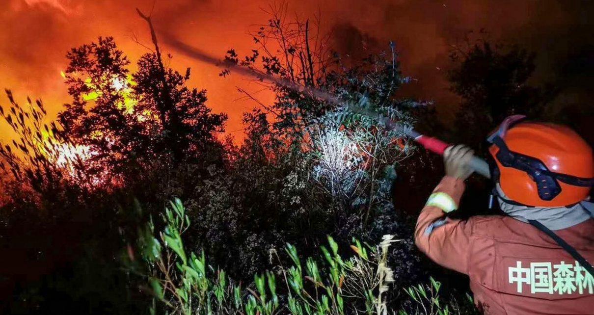 Foto de destaque retirada do site Getty Images (STR/AFP)